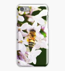 Bee on Lilac 7 iPhone Case/Skin