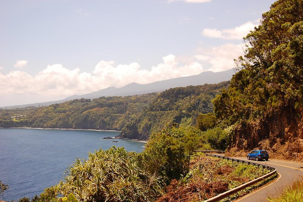 Maui drive by Justin Emery
