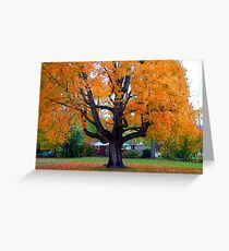 Fall Stands Tall  Greeting Card