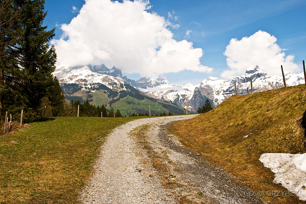 Early Spring in the Alps-Swiss by GOSIA GRZYBEK