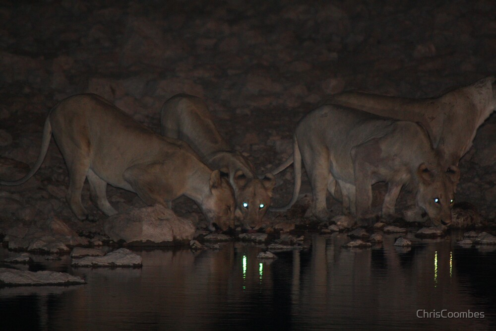 Night time drinks at the watering hole by ChrisCoombes