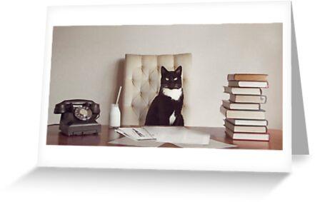 Firmenkatze von Catherine Holmes