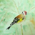 Goldfinch by penandstrings