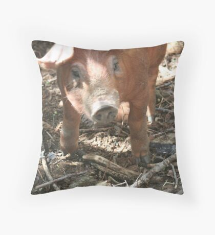Too Cute For One Little Pig Throw Pillow