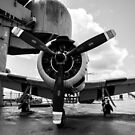 Warbird Up Top On The USS.Hornet BW 2 by Gypsykiss