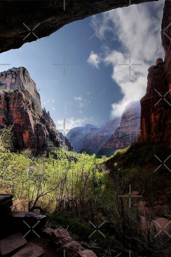 Exploring Zion by Varinia   - Globalphotos