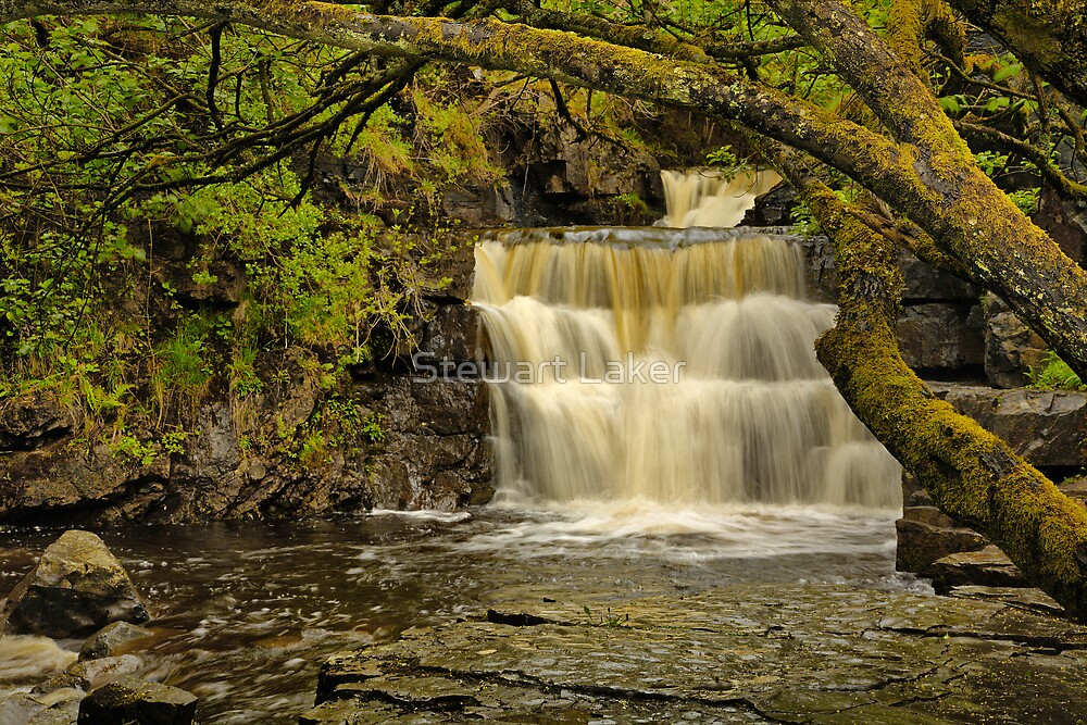 Bowlees Beck Waterfall by Stewart Laker