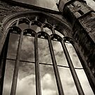 Knights Templar by Alan Watt