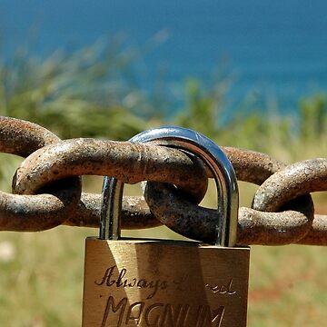 Love Locks -Always Loved Magnum, Port Macquarie 2016 by muz2142