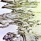 Exposed Rock by Margaret Stevens