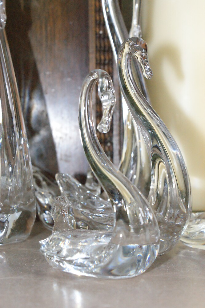 Glass Swan by ashley Jones
