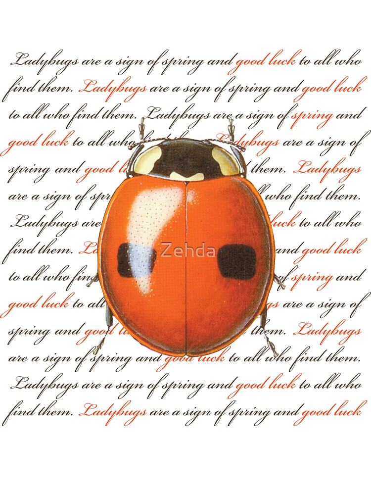 Ladybug by Zehda