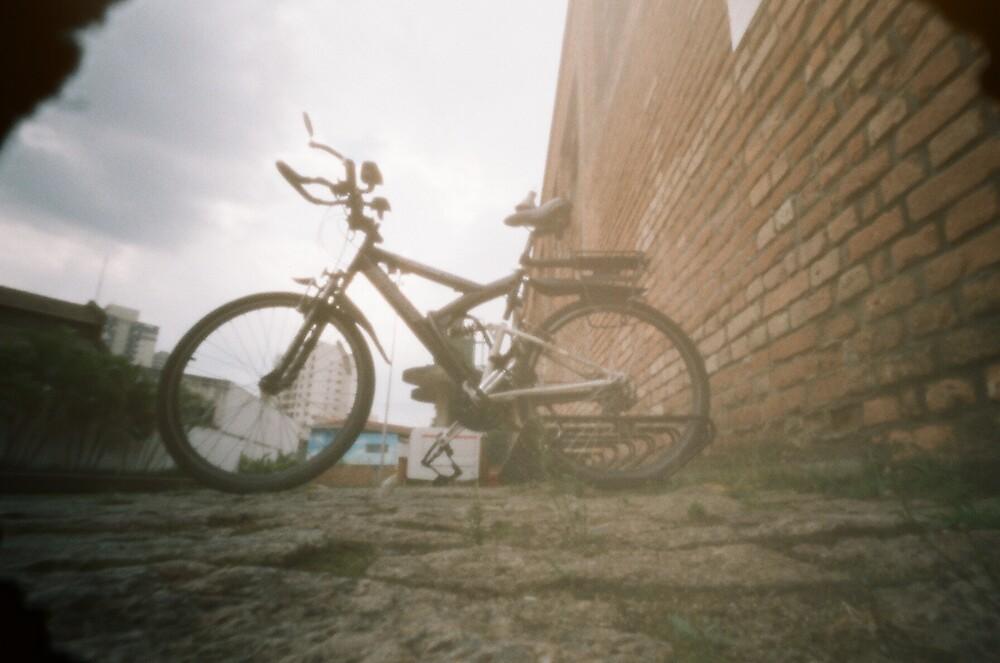 bike by Daniella Origuela