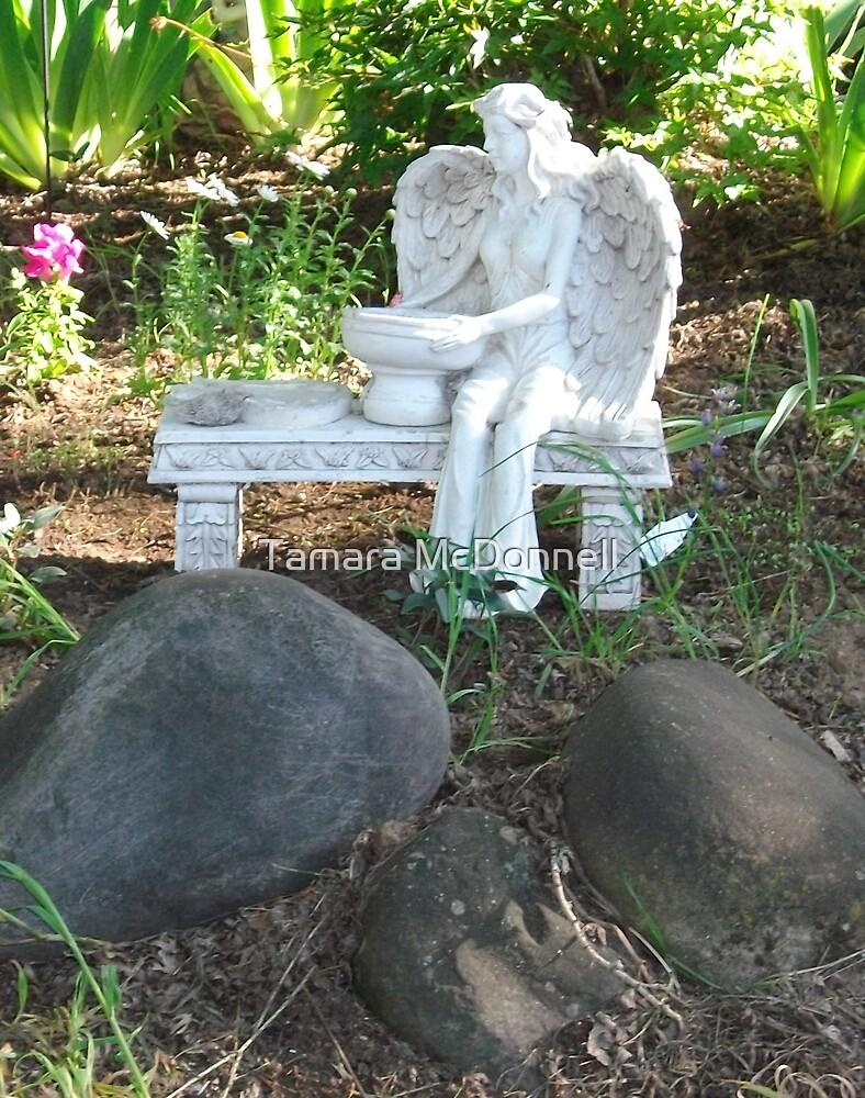 Angel in the Garden by Tamara Lindsey