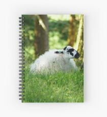 Sheep on the Moor Spiral Notebook