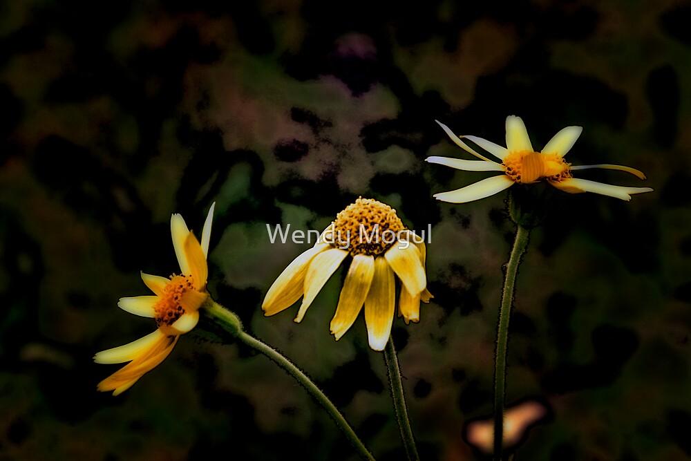 Three to go...  by Wendy Mogul