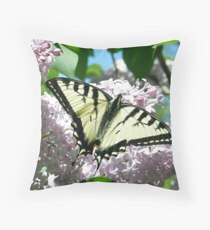First Swallowtail of 2009 Throw Pillow