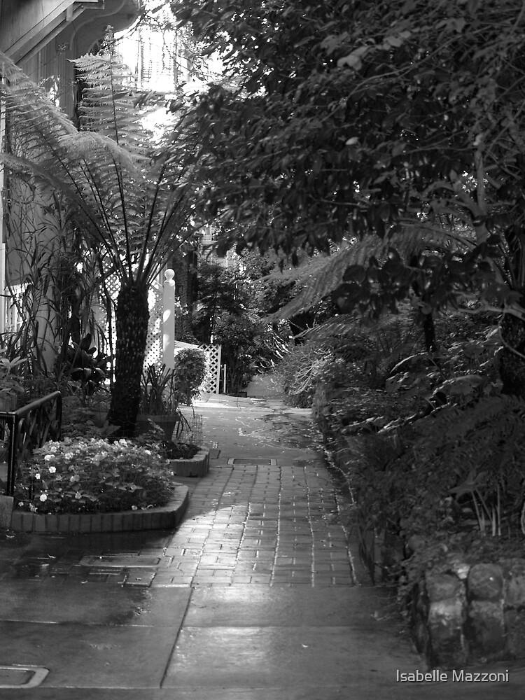Macondray street by Isabelle Mazzoni