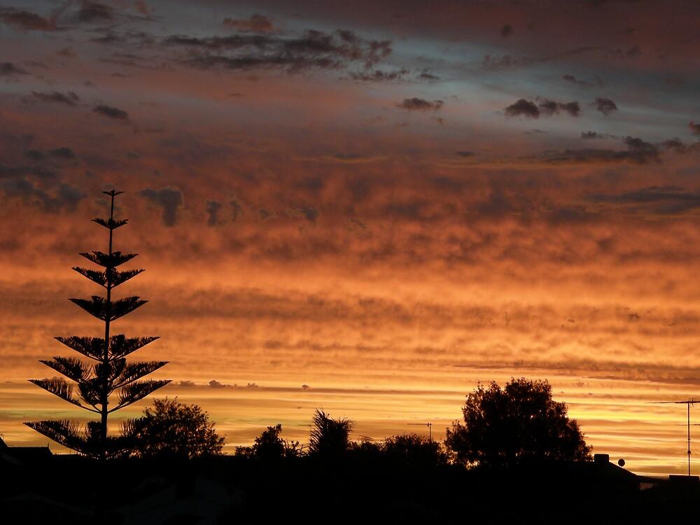 Western Australian Sunset by Kellie Scott