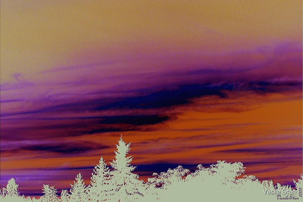 Backyard sunset by Vasile Stan
