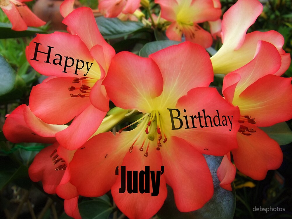 """""""Happy Birthday"""" Judy! by debsphotos"""
