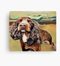 The Field Spaniel  Canvas Print