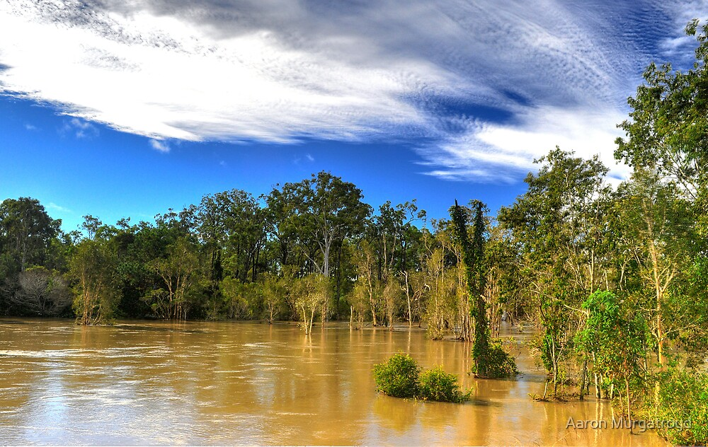 The Flood by Aaron Murgatroyd