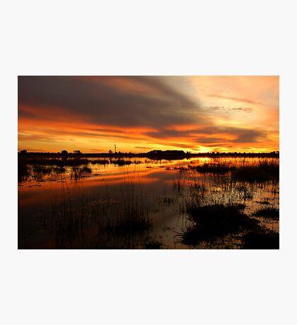 Golden Pond  Photographic Print