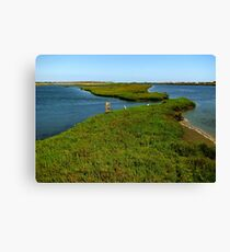 Bolsa Chica Ecological Reserve  Canvas Print
