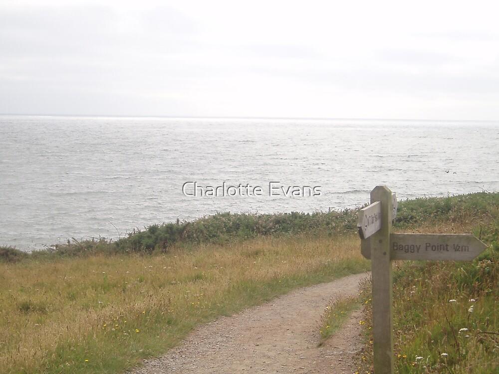 Baggy Point, Devon by Charlotte Evans