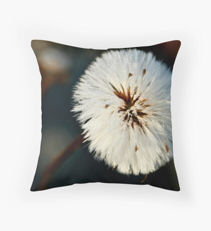 Snow Flower In SunLight Throw Pillow