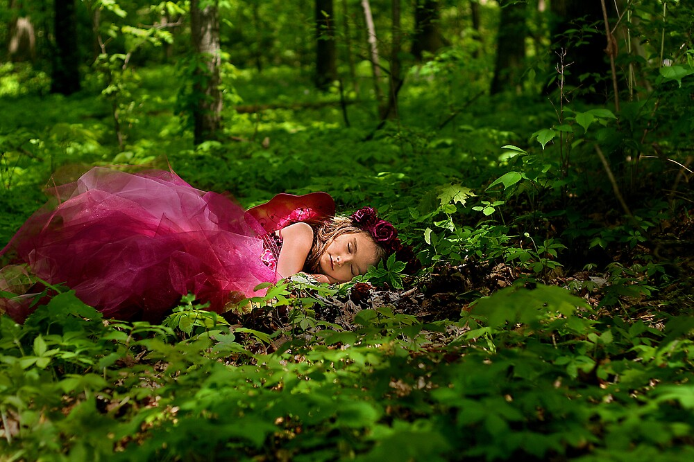 Shhh! Fairy Sleeping by mrshattery