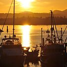 Sunset And The Boats by KirtTisdale