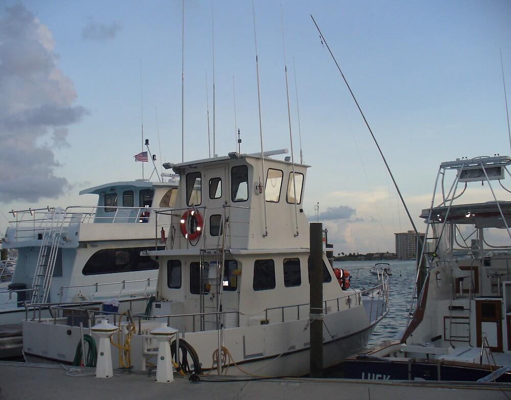 setting pier by bridgelizabeth