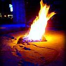 Fire Pit by Oranje