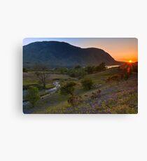 Rannerdale Valley Bluebells at Sunset Canvas Print