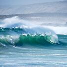 Surfs up by Ian Berry