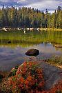 Upper Yosemite, Clear Lake by photosbyflood