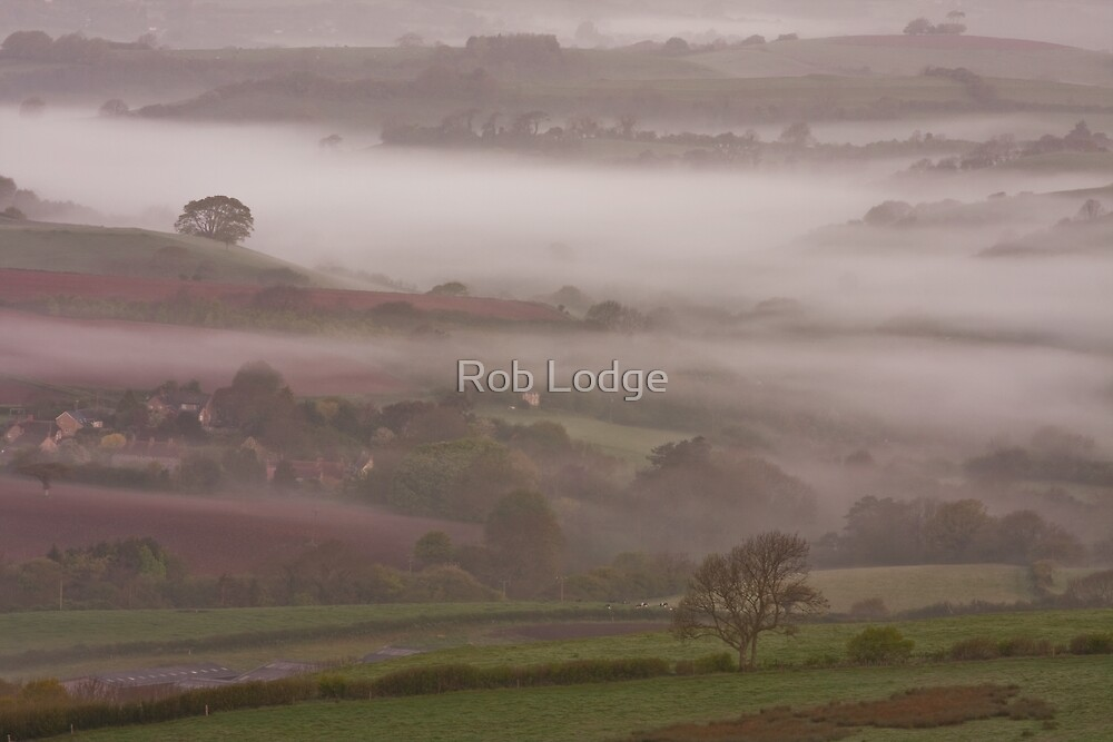 Misty morning from Eggardon Hill by Rob Lodge
