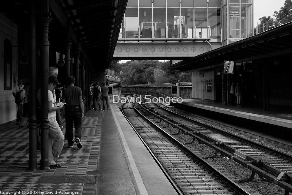 Vienna Railway by David Songco