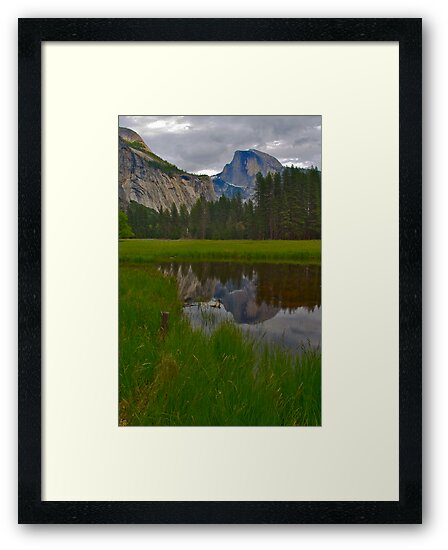 Reflection of Half Dome in Yosemite Meadow by photosbyflood