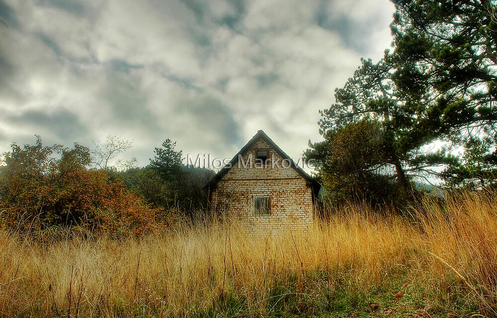 The Cottage by Milos Markovic