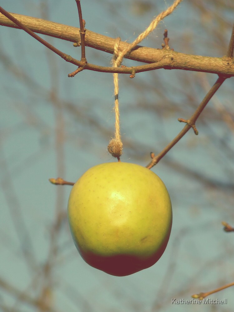 the apple tree by Katherine Mitchell