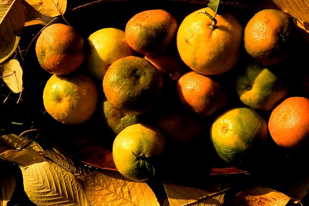 fruit by CatharineAmato