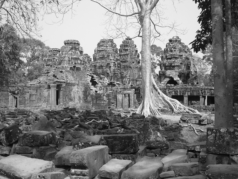 Ta Phrom Temple, Angkor Wat, Cambodia by Rena77uk