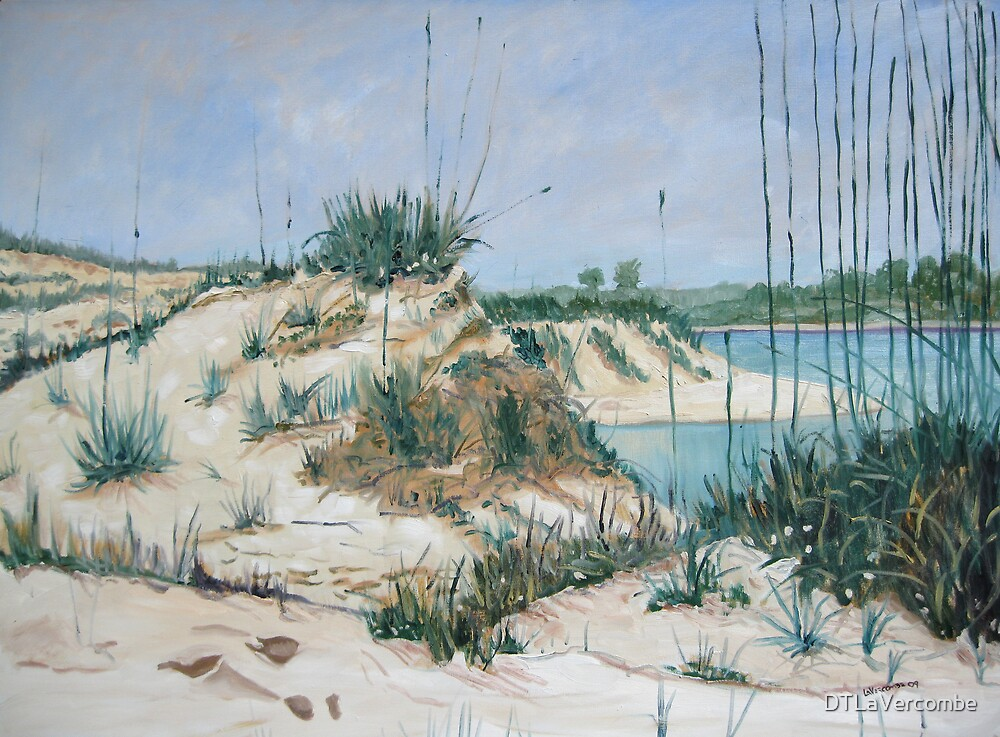 Matanzas Inlet, Midday by DTLaVercombe