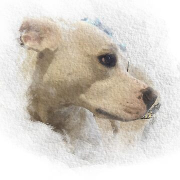 Watercolour dog II by LouFindlay