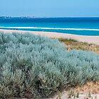 Singleton Beach Western Australia  by Melanie Small
