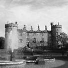 Kilkenny Castle by Martina Fagan