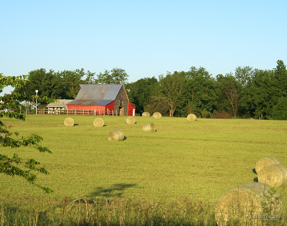 Hay Field in the Ozarks by skmimages